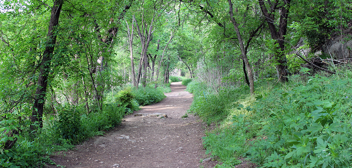 Emerald Crown Trail: Network of county trails closer to fruition